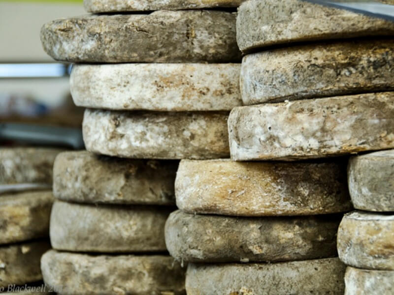 alps-cheese-aging-reblochon-credit-tasteofsavoie.wordpress.com-si